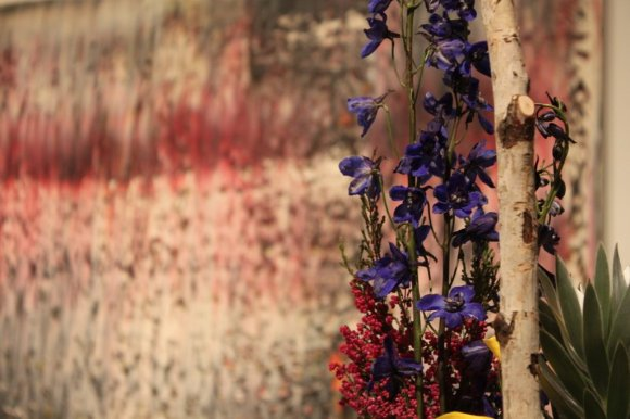 It's all about color here in this Main Level installation... (Art in Bloom: Mystery Photo #6. Photo by the author.)