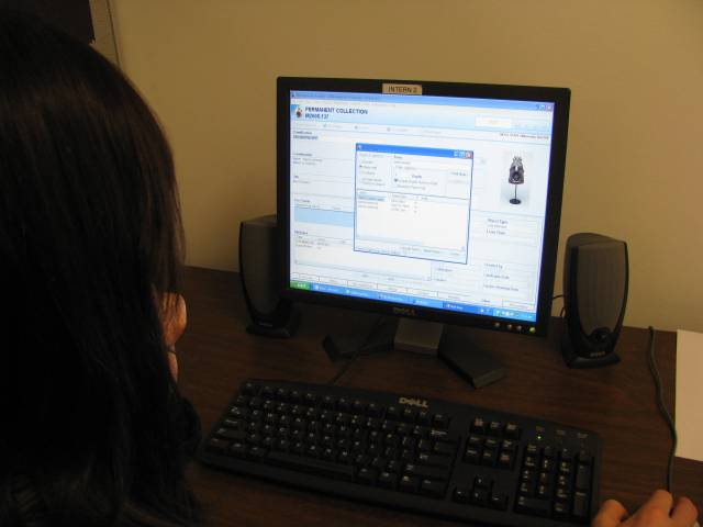 Current intern Courtney Books enters search terms into the collection database.