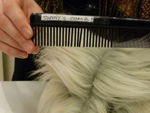 Sunny's comb