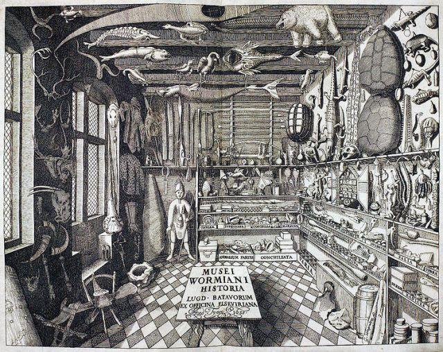 Ole Worm (1588-1654) Museum Wormianum; seu, Historia rerum rariorum, tam naturalium, quam artificialium, tam domesticarum, quam exoticarum . . . Leiden: ex officina Elseviriorum, 1655. 6 p. l., 389, [3] p. illus.