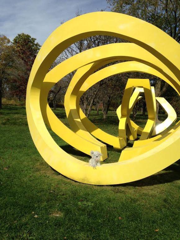 Sunny at Lynden Sculpture Garden